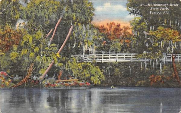 Hillsborough River State Park Tampa, Florida Postcard