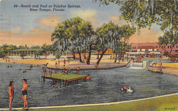 Near Tampa, Beach and Pool at Sulphur Springs  Florida Postcard