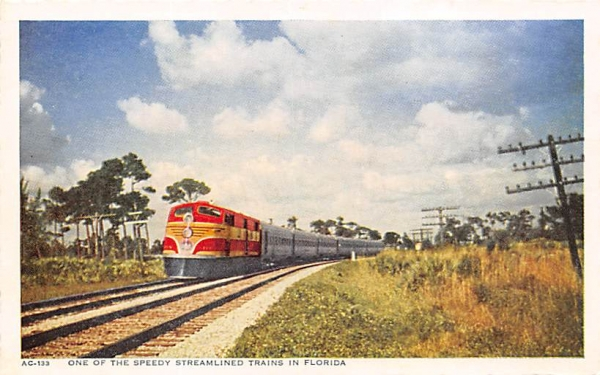 One of the Speedy Streamlined Trains in FL, USA Florida Postcard