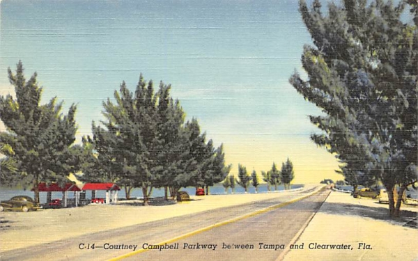 Between Tampa and Clearwater Florida Postcard