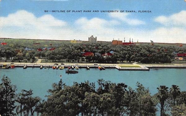 Plant Park and University of Tampa, FL, USA Florida Postcard