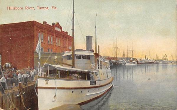 Hillsboro River Tampa, Florida Postcard