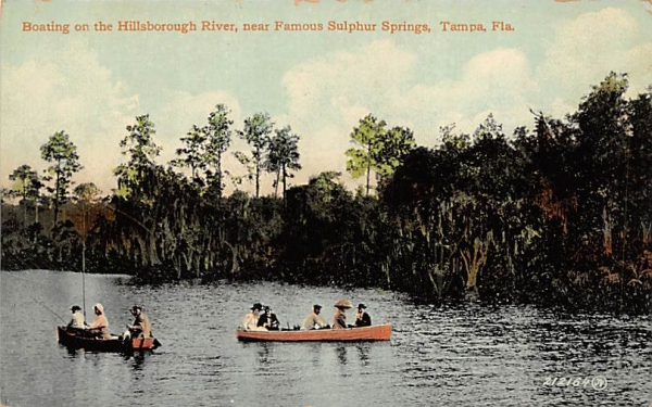 Boating on the Hillsborough River Tampa, Florida Postcard