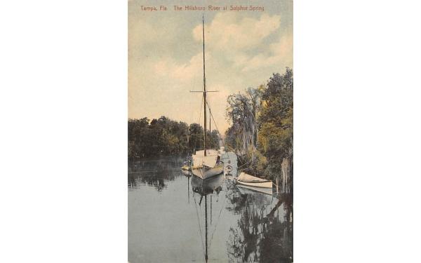 The Hillsboro River at Sulphur Spring Tampa, Florida Postcard