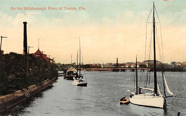 On the Hillsborough River Tampa, Florida Postcard