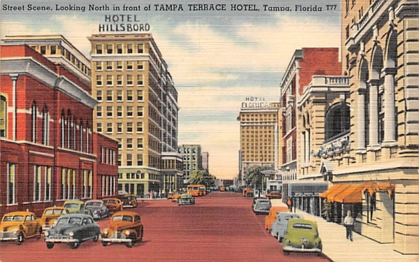 Looking North in front of Tampa Terrace Hotel Florida Postcard