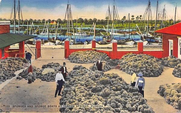 Sponges and Sponge Boats  Tarpon Springs, Florida Postcard