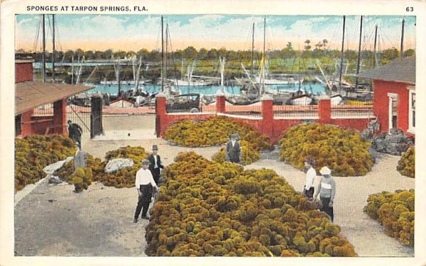 Sponges at Tarpon Springs, FL, USA Florida Postcard