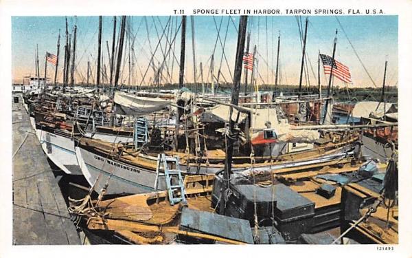 Sponge Fleet in Harbor Tarpon Springs, Florida Postcard