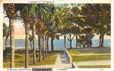A Scene at Titusville, Beautiful Indian River Florida Postcard