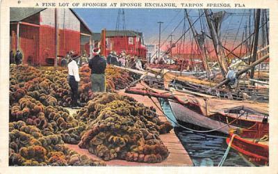 A Fine lot of Sponges at Sponge Exchange Tarpon Springs, Florida Postcard