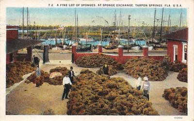 A Fine Lot of Sponges, At Sponge Exchange Tarpon Springs, Florida Postcard