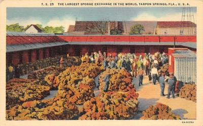 The Largest Sponge Exchange in the World Tarpon Springs, Florida Postcard
