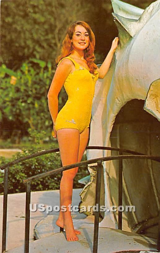 Weeki Wachee Mermaids - West Coast, Florida FL Postcard