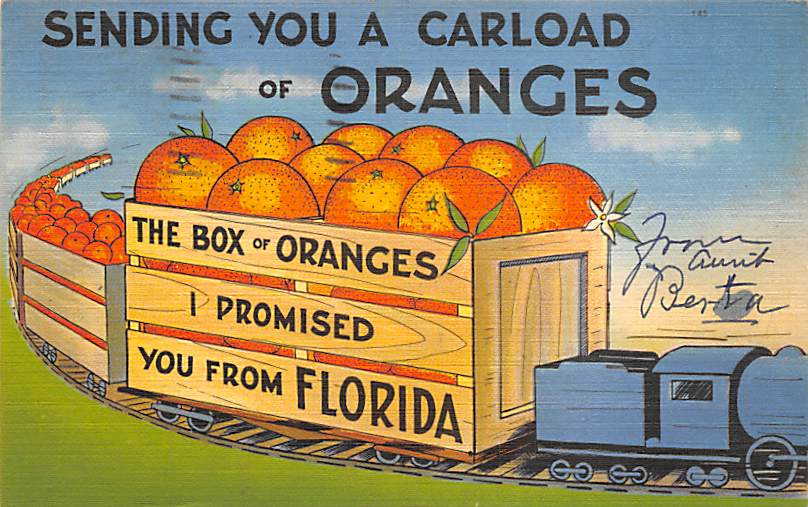 Orange Groves FL