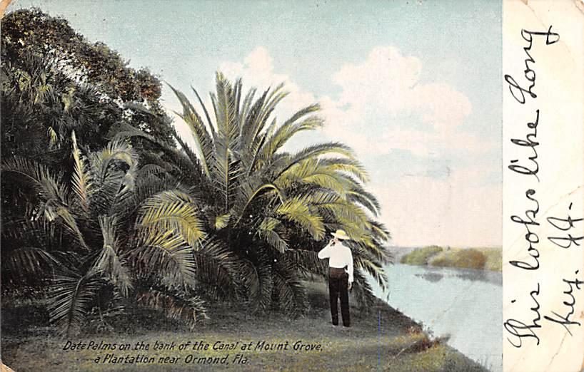 Mount Grove FL