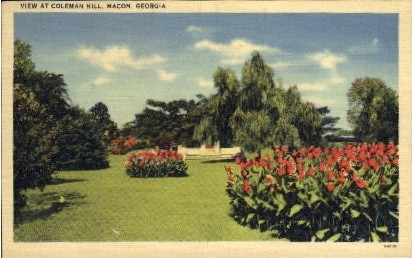View at Coleman Hill - Macon, Georgia GA Postcard