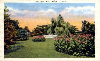 Coleman Hill - Macon, Georgia GA Postcard