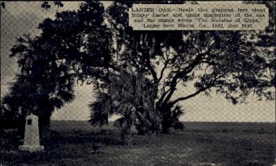 Lanier Oak - Macon, Georgia GA Postcard