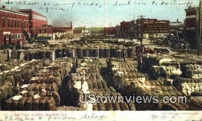 Cotton Scene - Macon, Georgia GA Postcard