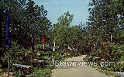 Avenue of Flag's, Little White House - Warm Springs, Georgia GA Postcard