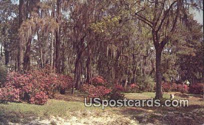 Brookwood Park - Valdosta, Georgia GA Postcard