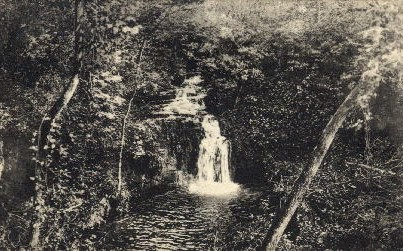 Casade Falls - Warm Springs, Georgia GA Postcard