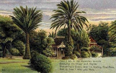 # 64 - Hawaiian Islands Postcards, Hawaii HI Postcard