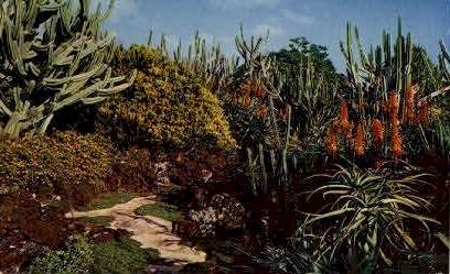 Moir's Pa'u-a-Laka Gardens - Koloa, Hawaii HI Postcard