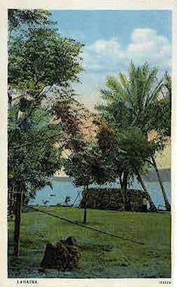 Near Mala Landing - Lahaina, Hawaii HI Postcard
