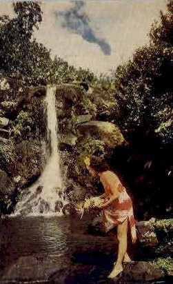 Hawaiian Waterfall - Hawaii Postcards Postcard