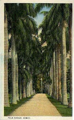 Palm Ave. - Hawaii Postcards, Hawaii HI Postcard