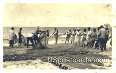 Real Photo - Hukilau Nets - Hawaiian Islands Postcards, Hawaii HI Postcard