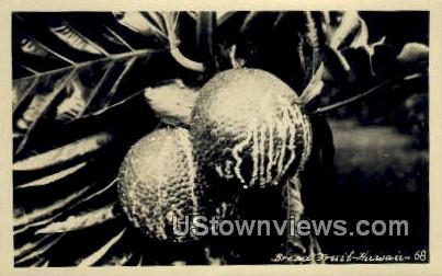 Bread Fruit, Real Photo - Hawaii Postcards, Hawaii HI Postcard