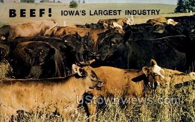 Iowa Beef Industry Council - Ames Postcard