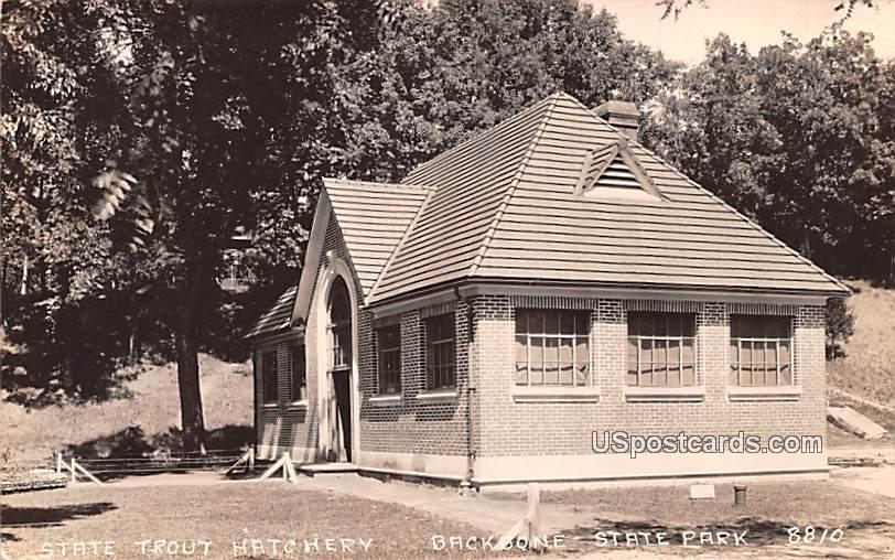 State Trout Hatchery - Backbone State Park, Iowa IA Postcard