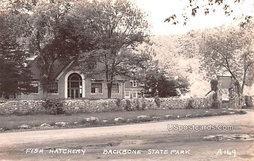 Fish Hatchery - Backbone State Park, Iowa IA Postcard
