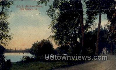 Birdland Drive - Des Moines, Iowa IA Postcard