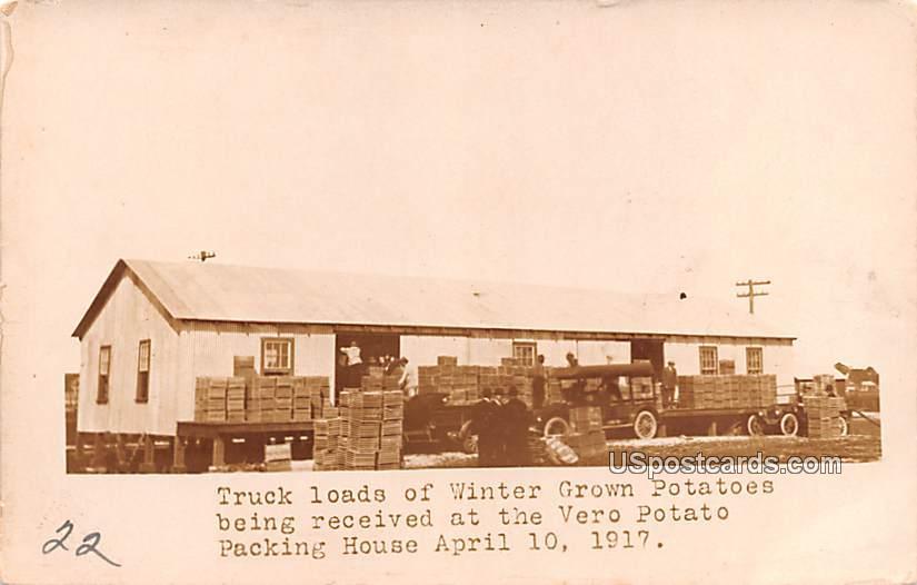 Truck loads of Winter Grown Potatoes - Davenport, Iowa IA Postcard