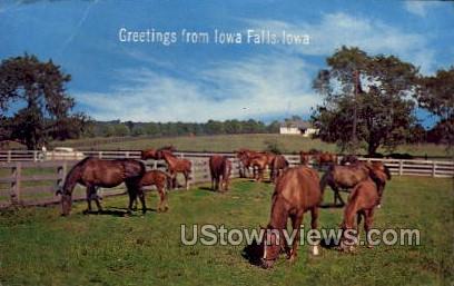Greetings from Iowa Falls - Iowa Falls Postcards Postcard