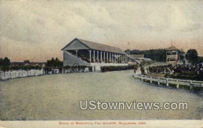 Scene at Maquoketa Fair Grounds - Iowa IA Postcard