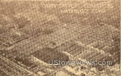The Dairy Cattle Congress - Waterloo, Iowa IA Postcard