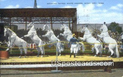 Mounted Patrol White Horses - Sioux City, Iowa IA Postcard