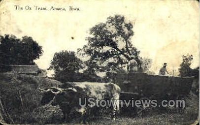 The Ox Team - Amana, Iowa IA Postcard