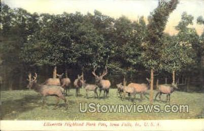 Ellsworth Highland Park Pets - Iowa Falls Postcards, Iowa IA Postcard