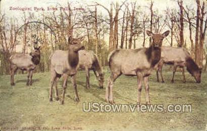 Zoological Park - Iowa Falls Postcards, Iowa IA Postcard