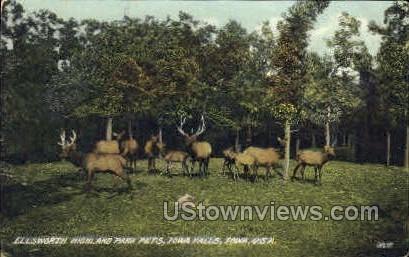 Ellsworth Highland Park Pets - Iowa Falls Postcards, Iowa IA Postcard