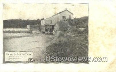 Banks of the Cedar - Osage, Iowa IA Postcard