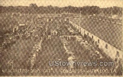 4H Dairy Cattle Congress - Waterloo, Iowa IA Postcard
