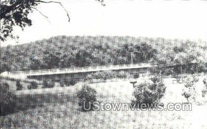 Bridge seen from Little Sioux River - Peterson, Iowa IA Postcard
